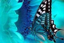 Bellezas naturales