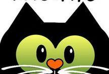 Kitteh Kuteness / Funny, crazy, silly, sweet cat stuff / by Sandy Nicholson