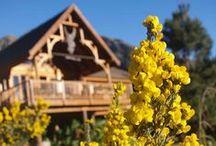 My Log Home / My spot in the mountains. Tsitsikamma Mountain Reserve TMR, Hemel op Aarde