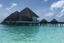 """Maldivas / El paraíso """"Maldivas"""""""