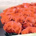 Flores - Flowers / Flores para enviar a domicilio en cumpleaños, aniversarios...