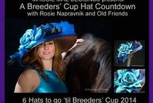Breeders' Cup Hat Countdown / The Breeders' Cup Hat Countdown from MAGGIE MAE DESIGNS® features jockey Rosie Napravnik wearing the many hats she has been modeling to support the retired racehorses of Old Friends in KY.