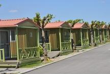 Alojamientos · Acommodations