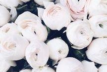 MOOD BOARD | ROMANTIC & DREAMY