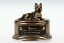 Pet Memorials / Pets are a member of your family and deserve a proper resting place too. From urns to memorial stones to cremation jewelry we have it all to make your special friend a great resting place.