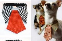 Easy DIY Dog Collars + Bows / Easy DIY Dog Collars + Bows | Craft Ideas | Bring out the dapper side of your puppy with these easy no sew bows and paracords for dogs. You'll also discover how to make your pet's average collar with a sprinkling of pretty jewels will add instant glamour to your daily dog walk within minutes.