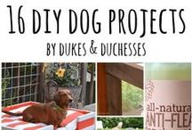 Easy DIY Projects for Dogs / Easy DIY Projects for Dogs |