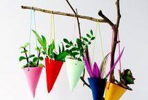 Gerillakertész / Növények lakásba, kertbe, utcára
