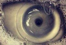 Visioni / L'occhio vede ciò che vuole