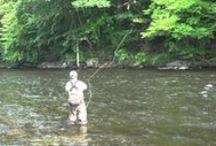 Fly Fishing Videos / Douglas Outdoors fly fishing videos