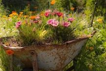 Glorious. Garden. Grow. / One of the most delightful things about a garden is the anticipation it provides ... W.E. Johns
