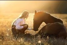 Koně a holky) / Horses and girls...