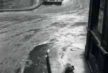 Robert Frank 1924 / Photographe américain d'origine suisse, né à Zurich (Suisse). Devient un photographe majeur des années 50-60, mais aussi un cinéaste indépendant engagé. Son livre le + connu : The Americans (58). Il adopte un point de vue ironique et extérieur sur la société américaine, et suit en 55-56 la fameuse Route 66. Il contribue au mouvement Beat, pratiquant la traversée des États-Unis (avec Jack Kerouac). En 60, il met son appareil Leica de côté et se consacre davantage aux films. Wiki