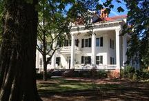 Historical Plantations and Homes / These are homes that I love and that inspire me in my writing.