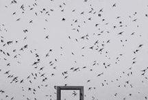 Shoji Ueda 1913-2000 / Photographe japonais. Né à Sakaiminato - mort à 87 ans. Fait des dunes son studio naturel. Invité par Edward Steichen en 1971 au MoMA. Ses premières photographies sont pictorialistes, mais il prend très vite le goût de l'expérimentation, de solarisation et de déformation sous l'agrandisseur. Wiki