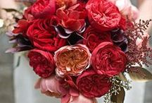 ブーケ・会場装花 [ 赤 レッド ワイン ] / ブーケや会場装花、花冠等のウェディングフラワーを中心に、ケーキ、ドレス、招待状、シューズ、アクセサリー等、結婚式のイメージをカラー別にまとめたボードです。  [ wedding inspiration : red & wine ] wedding,flower,bouquet,table coordination,centerpiece,decor,dress,shoes,invitation card and so on.