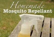 DiY Metodi insetticidi per ospiti indesiderati / DiY Methods insecticide