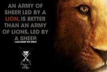 Live Life Like A Lion