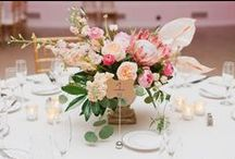 Wedding Ideas 2015 / This board is for things I think are cool ideas and would also look good in the Savoy Ballroom.