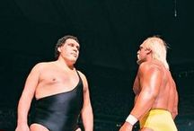Wrestling greats.. / Whatcha Gonna do when Max McCoy,s Pinterest goes wild on you Brother!.. WWE & WWF & WCW / by Max McCoy