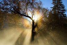 Beautiful beautiful nature