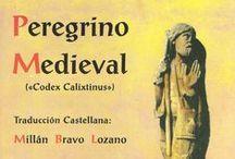 Camino de Santiago, libros