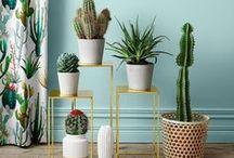 INTERIOR DESIGN / interior design & living