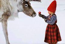 Jul / Allt kul som har med julen att göra