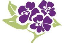Purity Herbs aangezichtslijn / Verzorg, voedt en verwen uw aangezicht met de crèmes van Purity Herbs. Daar ze zowel voedend als vochtinbrengend zijn en rijk aan kruiden en vitamines maken ze je huid gezond en stralend. U zult versteld staan van het resultaat! Bestel online op www.purityherbs.org