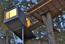 Treehouse / architecture within the trees / by Geoffrey Walters