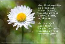 Citáty ... v jazyce českém / Slova z duše i od srdce. .............................................................................................................................................................................................