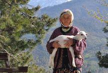 The St Paul's trail Turkey / Hiking