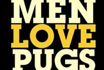 For The Love Of Chinese Pug Dogs... / The Greatest Little Companions On Earth...
