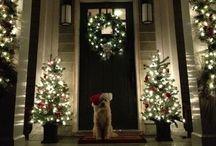 Holiday Decor / by Andrea T