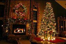 CHRISTMAS & THANKSGIVING / by Bridgette Williams
