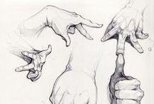 drawing & anatomy