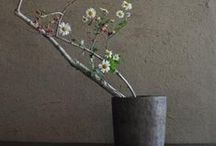 ✜ Wabi Sabi Wafu Simplicity / Japanese style simplicity