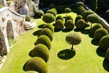 Gardens / by Nieves F. M.