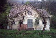 parasztház,cottage