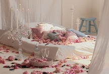 In my dreams!!!! / by Sue Brannlund