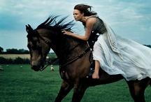 The Horsey Set