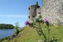 Scottish Historical / Scotland of the past.