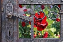 Doors / When one door closes, another opens; but we often look so long and so regretfully upon the closed door that we do not see the one which has opened for us. ~  Alexander Graham Bell