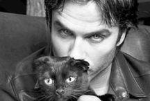 Ian Somerhalder / Damon ♥