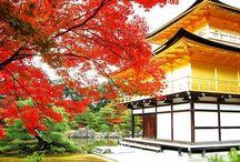 Japan , kyoto