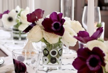 Entertaining Ideas / Tablescapes and Party Ideas