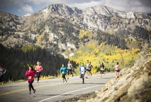 Marathon Photos / The Big Cottonwood Marathon and Half is a running event held annually in Big Cottonwood Canyon, near Salt Lake City, Utah. Nowhere will you get a better combination of fast and beautiful in a race. / by REVEL Race Series