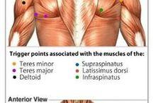 Informacion internacional fisioterapia
