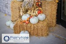Fall Weddings / Fall Weddings photographed by Fairytale Productions in Michigan, Ohio, or Florida