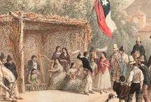 CLAUDIO GAY NATURALISTA EN SU VIAJE A CHILE SIGLO XIX / Litografías de sus libros